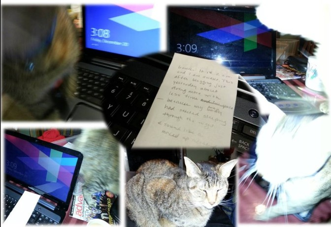 I thought I could simply shoot a photo of the receipt where I began writing at 2 a.m. with my laptop keyboard... my cat kept getting in the way; I took six shots of lousy and made a collage. Let's call it art.