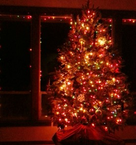 Yesterday, the final lighting of the Christmas tree and outside lights that bedecked our home this season.